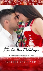 His for the Holidays eBook cover
