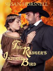 The Ranger's Injured Bird EBook